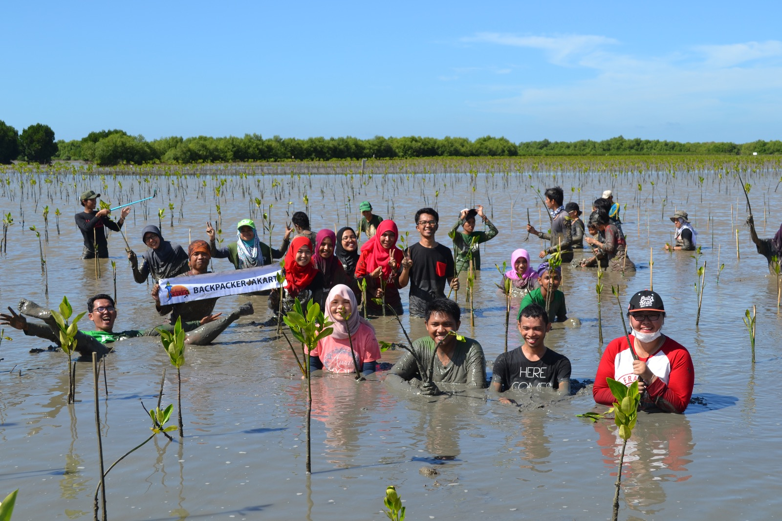 Photo of Menanan Bibit Pohon Mangrove Di Muara Gembong, Bekasi
