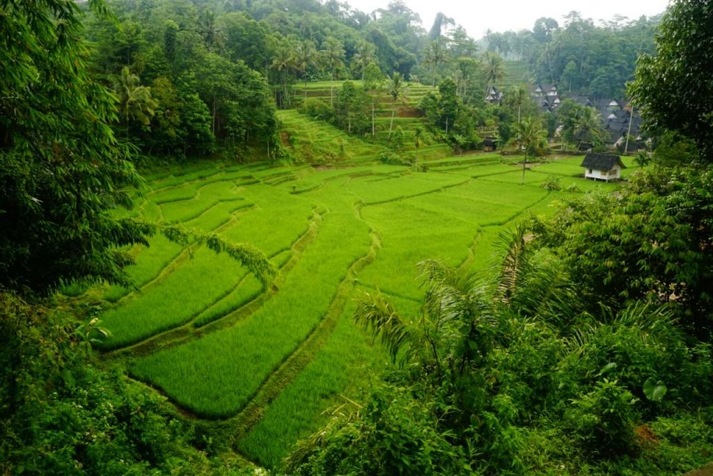 Photo of Mengulik Gaya Hidup Warga Kampung Naga, Tasikmalaya