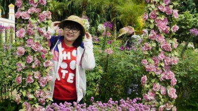 Photo of Kebun Bunga Begonia, Tempat Wisata Yang Cocok Untuk Keluarga, Lembang